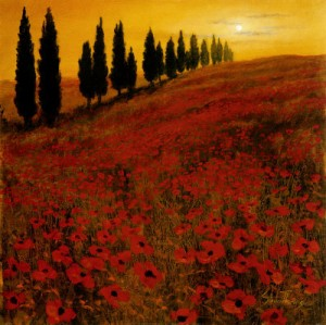 Poppies - painted by Steve Thoms